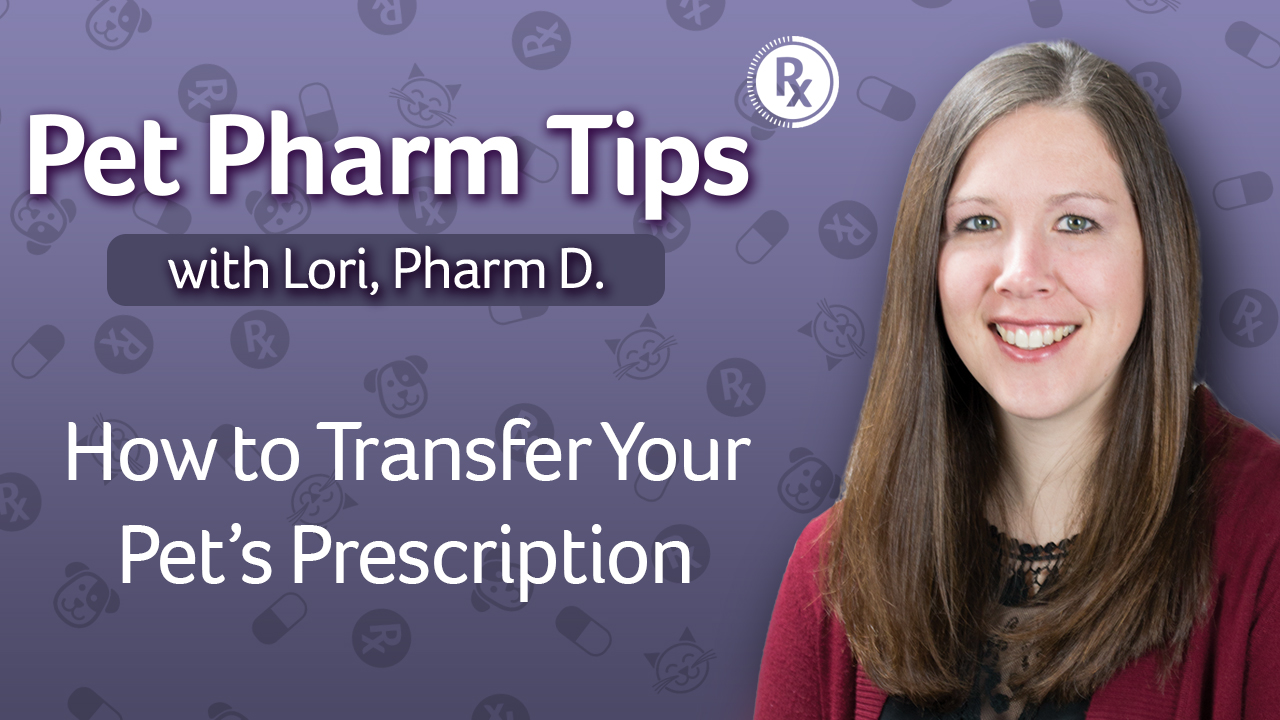 transfer pet prescription