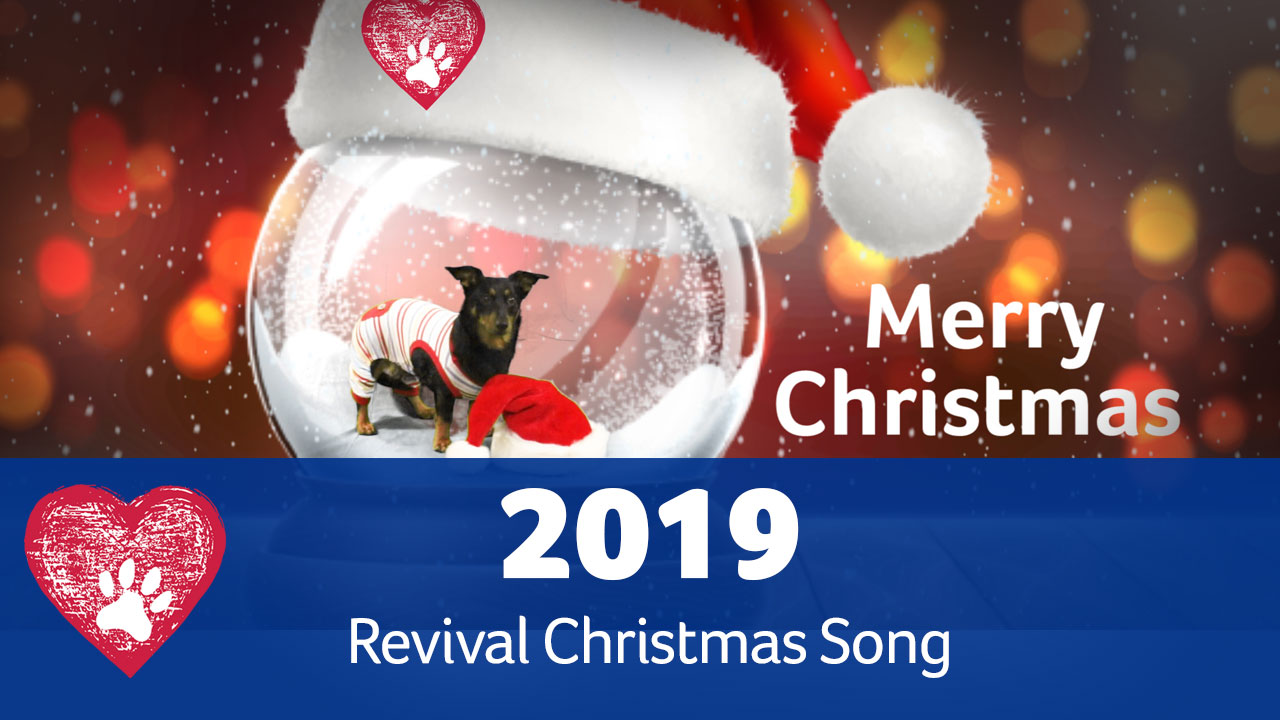 Revival Christmas Jingle